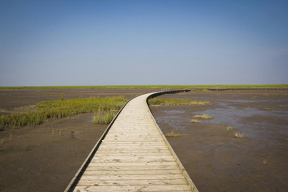 Morze Wattowe - park narodowy