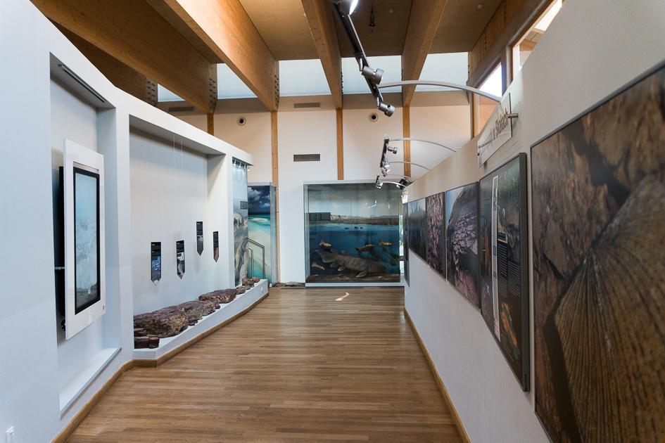 Centrum Geoedukacji wKielcach