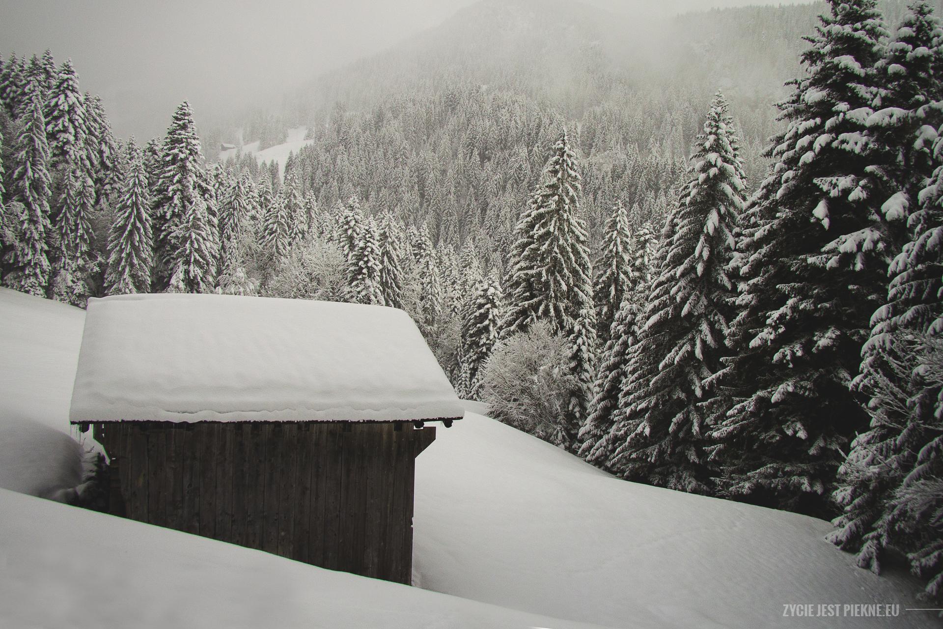 szwajcaria08