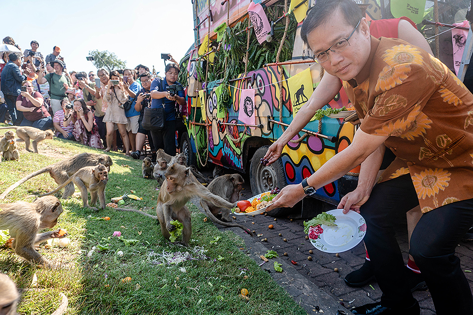 Festiwal małp wTajlandii